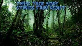 3 True Scary Stories From Reddit (Vol. 28)