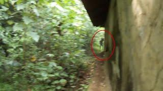Is It Alien or Ghost ? Mysterious Creature Caught on Camera From Kerala Village !! Scary Videos
