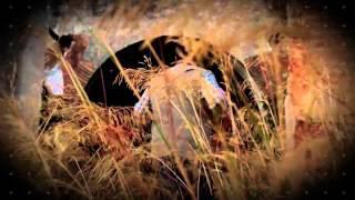 Trailer Andalucia Paranormal