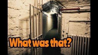 Strange Bangs Captured in Prison Cells