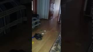 Сверхъестественное аномальное паронормальное видео в квартире