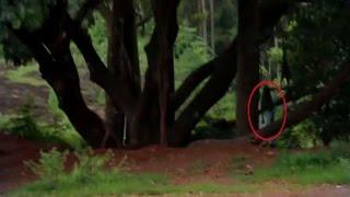 Real Ghost Sightings | Ghost Caught On Tape | Scary Videos | Ghost Videos