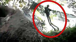 Mysterious Creature Compilation, Real Ghost Attack Compilation 2017, Scary Videos