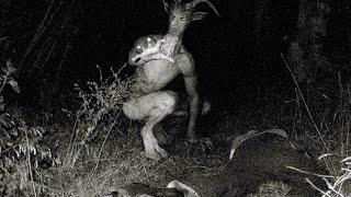 Goatman Legend ➨ Creature Living in Lake Worth