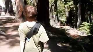 "Five Lakes Granite Chief Wilderness - Part 11 ""Lord Dick Tracy and His Pregnant Sidekick"