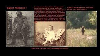 Paranormal Central™ Little girl finds Bigfoot tracks near Yosemite!