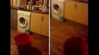 Mujer graba en video un poltergeist real en su casa de Irlanda