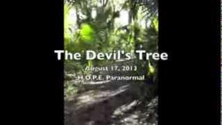 The REAL Devil's Tree: Part 1