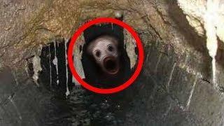 20 Terroríficas Criaturas Extrañas Captado en Video