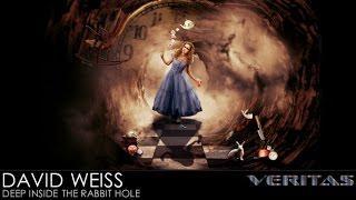 Veritas Radio - David Weiss - Deep Inside the Rabbit Hole
