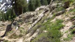 """Noble & Bull Lake - Part 12 """"Leap Frog"""""""