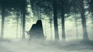 Haunted Forest LIVE Ghost Hunt (MOST HAUNTED FOREST)