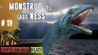 EL MONSTRUO DEL LAGO NESS LA HISTORIA DEL CRIPTIDO MÁS FAMOSO @OxlackCastro