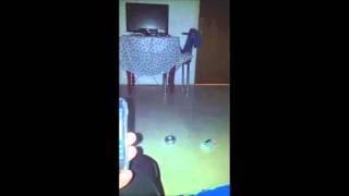 ORBS in my room a 21 min session and a few cool ORBS