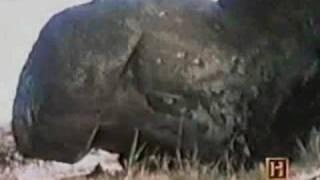 In Search Of... S01E17 6/15/1977 The Easter Island Massacre Part 3