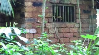 Real Ghost Caught On Tape | Real Ghost in Abandoned house | Scary video