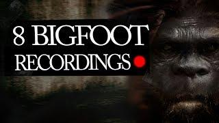 8 Mysterious Bigfoot Sightings & Sasquatch Footage Caught on Camera