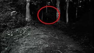 Real Life Ghost Hunters Investigating Creepy Haunted Woods