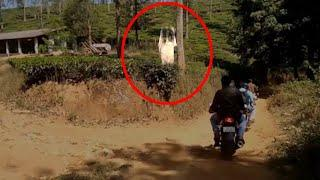 Ghost Like Figure Hanging Near A Tree Caught On Camera!!