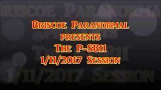 P-SB11 Session 2017 In The Sinister Laboratory