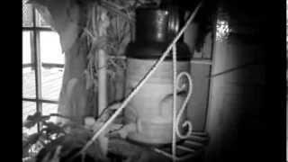 Poltergeist, Ghost, Entity in a water pitcher. Antique shop find proves to be haunted? Vlog.