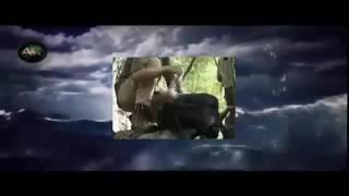 Destination Truth S04E13 Thai Tree People and Aiya Napa Monster