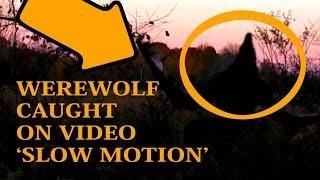 REAL Werewolf Sighting Caught On Tape (Shown In Slow Motion ) MICHIGAN DOGMAN | NEW 2016