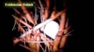 ESCALOFRIANTE VIDEO DE UNA BRUJA ¿sera real? @OxlackCastro