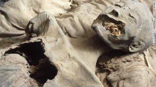Queen Nefertiti's tomb found