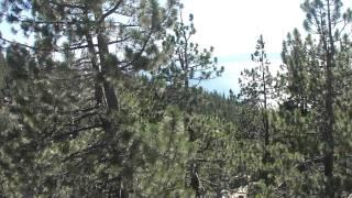 "Flume Trail Part 14 ""An Encounter With Lake Tahoe"""