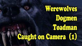 Real Werewolves Dogmen Strange Creatures Caught On Video (SCARY) NEW 2016 (1)