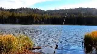 "Burnside Lake - Part 21 ""Day 1 Fishing At Sunset"""