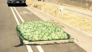 MYSTERIOUS Green Foam Found Coming From Drain in Utah