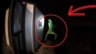Alien Sighting! We Really Aren't Alone