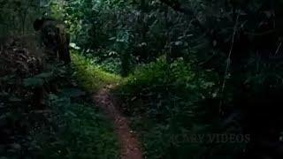 Mysterious Spirit Sightings Caught On Camera | Real Ghost Videos
