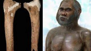 Bone of mysterious 'Red Deer Man' found in Chinese cave may belong to new species of primitive human