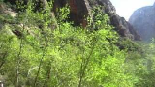 Zions Raining Cliffs