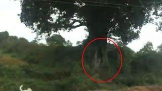 Ghost On Road | Real Ghost Caught On Camera | Scary Ghost Videos