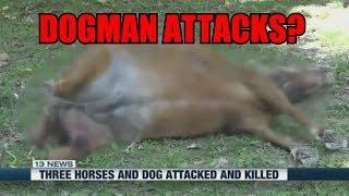 Kentucky Dogman? Animal Mutilations And Attacks 2018