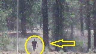 REAL BIGFOOT SIGHTINGS Part 2