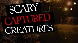 Scary YouTube Videos Of Unexplained Creatures
