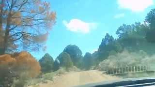 "Grantsville Nevada - Part 2 ""Primitive Humboldt Toiyabe Forest"""