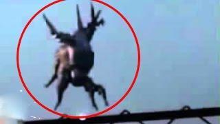 5 Videos de Terror en 2017 | Extraña Criatura 2017 | Fantasma en Brazil