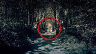 Real Ghost Video In Haunted Screaming Woods | Real Paranormal Activity