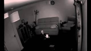 Loads of ORBs from Live DVR 25th Jan 2015,
