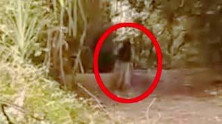 Supernatural Ghost-Like Creature Caught On Camera In A Forest!! Ghost Sightings
