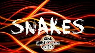 Snakes | Ghost Stories, Paranormal, Supernatural, Hauntings, Horror