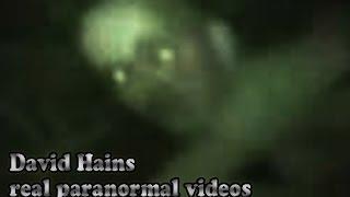 Real or Fake? Aliens, Hobbits and Fairy Sightings   ¿Real o falso? Hobbits y Ataques de Hadas
