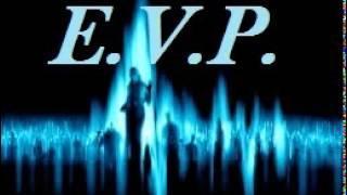EVP responses collection 8