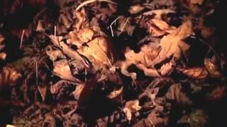 National Documentary Films: Celtic Monsters - Witches - BBC Documentary 2014